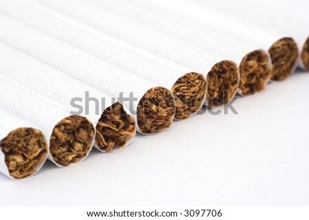 macro shot of some cigarettes in line