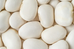 Macro shot of white haricot beans background. Top view