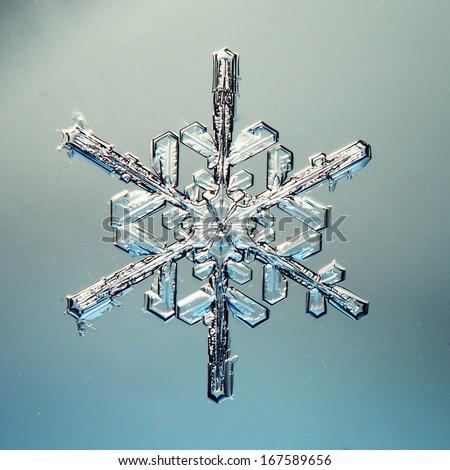 macro snowflake ice crystals present natural #167589656