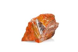 macro stone mineral petrified wood on a white background close-up