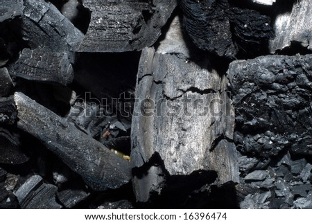 Macro view of some charred wood from a fire