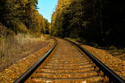 Macro view on the train rail truning in distance of autumn forest