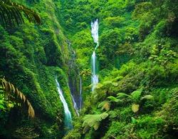 Madakaripura  Waterfall, East Java, Indonesia