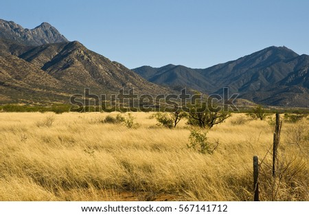 Shutterstock Madera Canyon, Arizona
