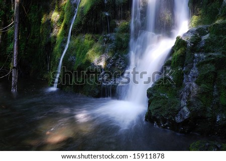 Madison Falls in Olympic National Park in Washington State, USA #15911878