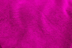 Magenta clean wool  texture background. light natural sheep wool. magenta seamless cotton. texture of fluffy fur for designers. close-up fragment magenta wool carpet.