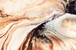 Magic artwork. Fantastic coral colors. Natural luxury. Modern background. Style incorporates the swirls of marble or the ripples of agate. Contemporary fine art.  Mixed paints with golden powder.