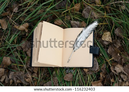 magic book and silver pen - stock photo