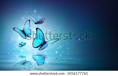 Magic Butterflies On Water - Contain 3d Illustration