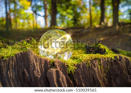 Magic crystal ball atom on tree stump moss for autumn fantasy imagery