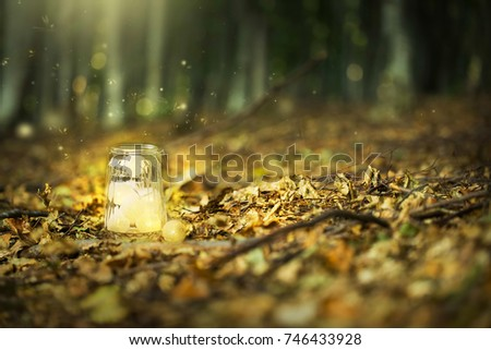 Magic fairy forest with fireflies and a bright lamp, mysterious lantern in a surreal forest with dried leaves and dreamy lights #746433928
