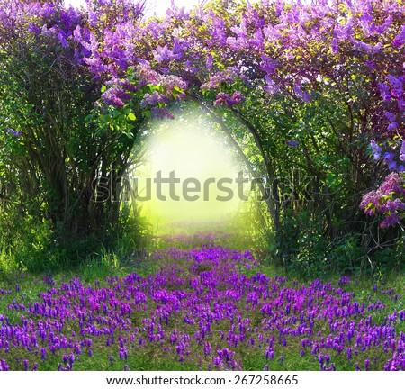 stock photo magic spring forest 267258665 - Каталог — Фотообои «Балконы, арки»