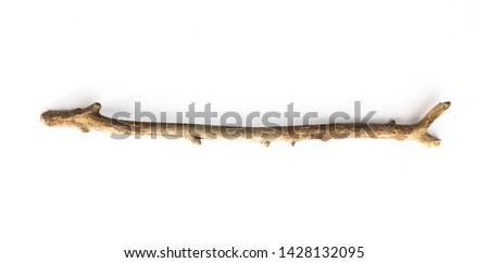 magic stick, wooden walking stick isolated on white background #1428132095