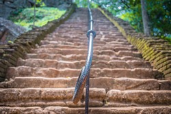 Magic stone steps going a long way,sigiriya Srilanka.