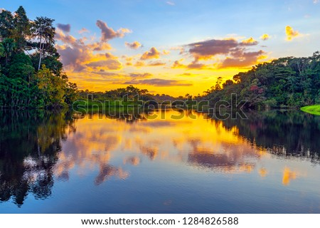 Magic sunset in the Amazon Rainforest, Yasuni national park. The Amazon rainforest comprise the countries of Ecuador, Peru, Bolivia, Brazil, Colombia, Suriname, Venezuela, Guyana.