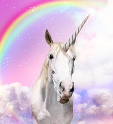 Magic unicorn in beautiful sky with rainbow and fluffy clouds. Fantasy world