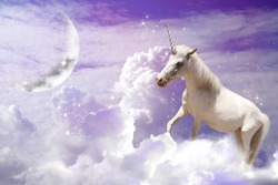 Magic unicorn in fantastic sky with fluffy clouds and crescent
