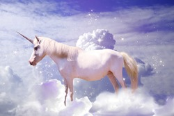 Magic unicorn in fantastic starry sky with fluffy clouds