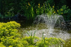 Magical garden pond with blooming water lilies and lotuses. Cascading fountain in center. Evergreens are reflected in water like in mirror. Atmosphere of relaxing holiday and happiness.