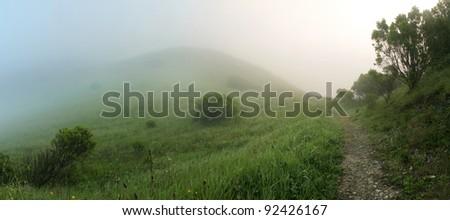 Magical hillside on Foggy Morning
