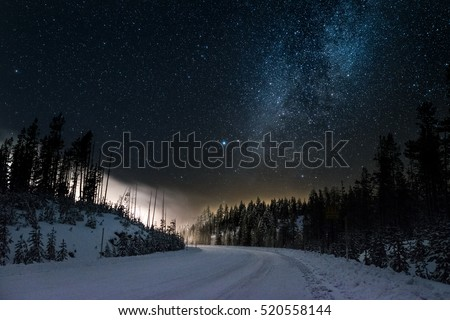 Magical Snowy Road