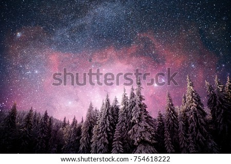 Magical winter landscape snow covered tree. Vibrant night sky with stars and nebula and galaxy. Deep sky astrophoto. Elements furnished by NASA
