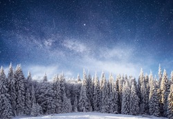 Magical winter landscape with snow covered tree. Vibrant night sky with stars and nebula and galaxy astrophoto.