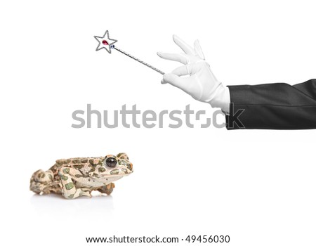 Magician holding a magic wand and a frog isolated on white background