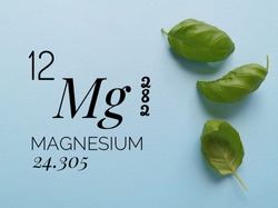 Magnesium is a chemical element of the periodic table with the symbol Mg and atomic number 12. The symbol Mg with atomic data and green leaves (magnesium is essential for chlorophyll, photosynthesis).