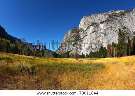 Magnificent glade with a yellow grass in valley Yosemite park. October, early morning