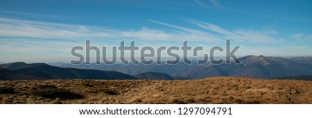 Magnificent panoramic view the coniferous forest on the mighty Carpathians Mountains and beautiful blue sky background. Beauty of wild virgin Ukrainian nature. Peacefulness