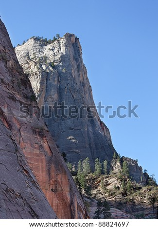Magnificent white cliff of Zion National Park