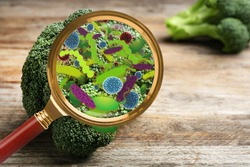 Magnifying glass and illustration of microbes on broccoli. Food poisoning concept