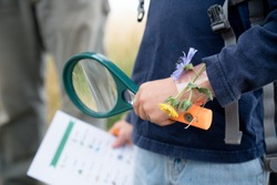 Magnifying glass and scavenger hunt in child's hands