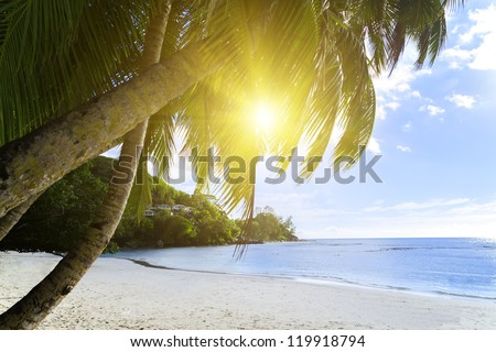 Mahe island, Seychelles. Anse Soleil, lazare bay (Beach). The island of dreams for a rest and relaxation. White coral beach sand. A heavenly place.