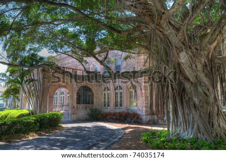 Main entrance of Charles & Edith Ringling's winter retreat, showcasing a majestic Banyan tree and beautiful color of the marble construction.  This building now houses offices for New College of Fl.
