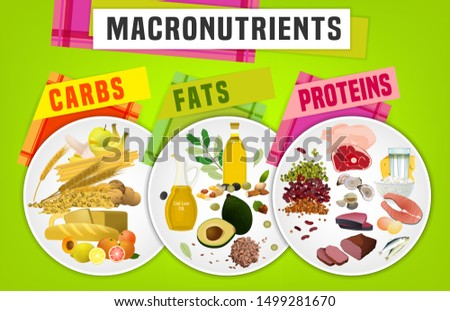 Main food groups - macronutrients. Carbohydrates, fats and proteins in comparison. Dieting, healthcare and eutrophy concept. The illustration on a bright background. Landscape poster.