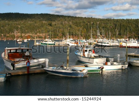 Maine boats in harbor, Bar Harbor, Maine