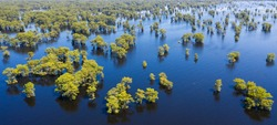 Majestic Atchafalaya river and swamp in Louisiana, aerial view