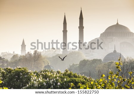 Majestic Blue Mosque (built 1616) in the vibrant city of Istanbul, Turkey. Stockfoto ©