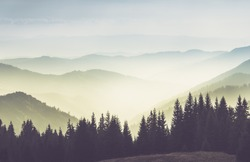 Majestic landscape of summer mountains. A view of the misty slopes of the mountains in the distance. Morning misty coniferous forest hills in fog and rays of sunlight.Travel background.