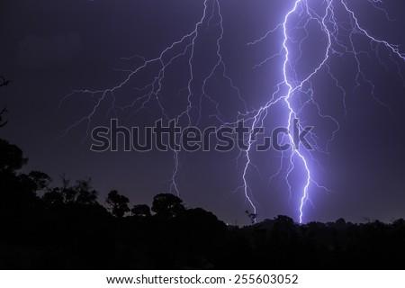 Majestic lightning bolt