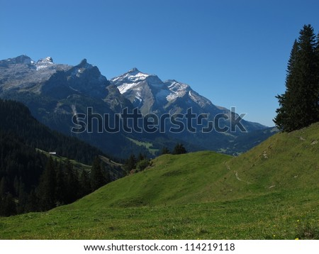 Majestic Oldenhorn And Green Meadow