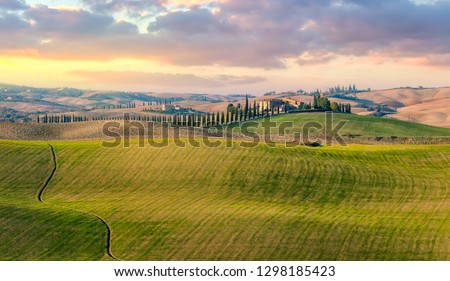Majestic Panoramic view of typical Tuscany countryside nature landscape. Beautiful hills at the sunrise time, cypresses, fields and rural road. Italy, Europe