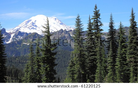Majestic, snow capped, Mount Rainier, as seen from hiking trail near Lake Tipsoo, with evergreen conifer trees in foreground