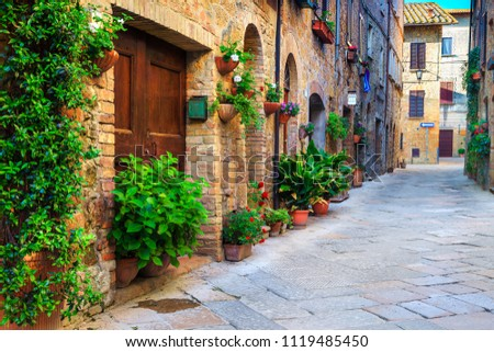 Majestic traditional decorated street with colorful flowers and rural rustic houses, Pienza, Tuscany, Italy, Europe #1119485450