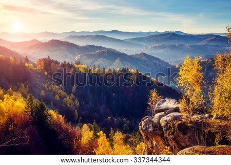 Stock Photo Majestic trees with sunny beams at mountain valley. Dramatic and picturesque morning scene. Red and yellow leaves. Warm toning effect. Carpathians, Sokilsky ridge. Ukraine, Europe. Beauty world.
