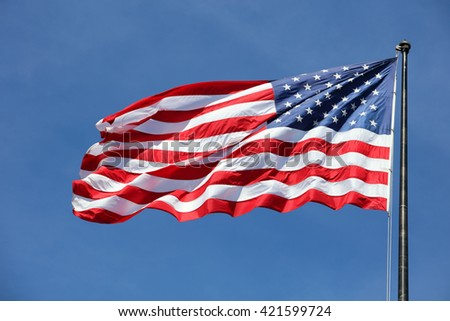 Majestic United States Flag