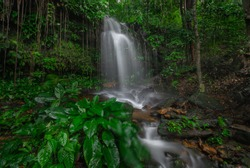 Majestic waterfall in the dense rainforest of Santubung Mountain, Kuching sarawak, Borneo, Malaysia. Soft focus due to high ISO and Long Exposure.