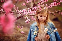 Majorca, Spain, Springtime Almond Tree Beautiful People